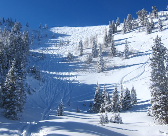 Fresh tracks in Puma Bowl. We came down a line on looker's right.