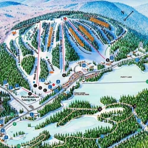 Thumbnail Image King Pine - Winter Map