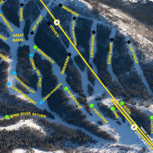 Thumbnail Image White Pine - Winter Map